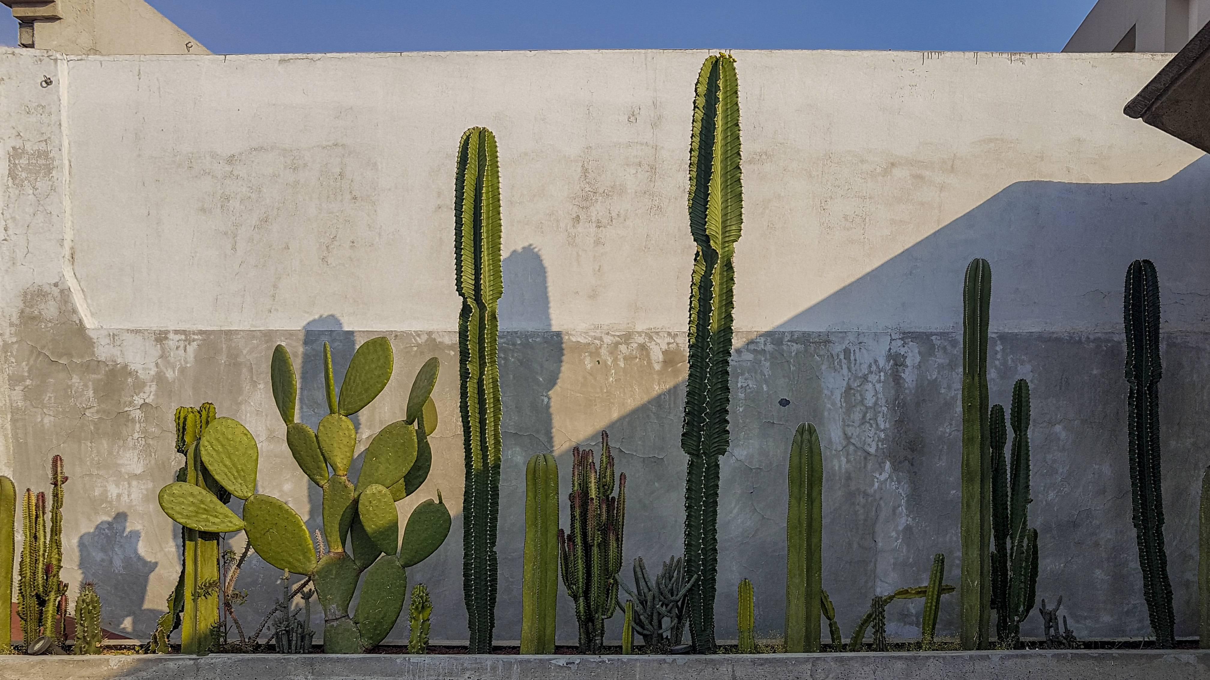 hacienda décoration